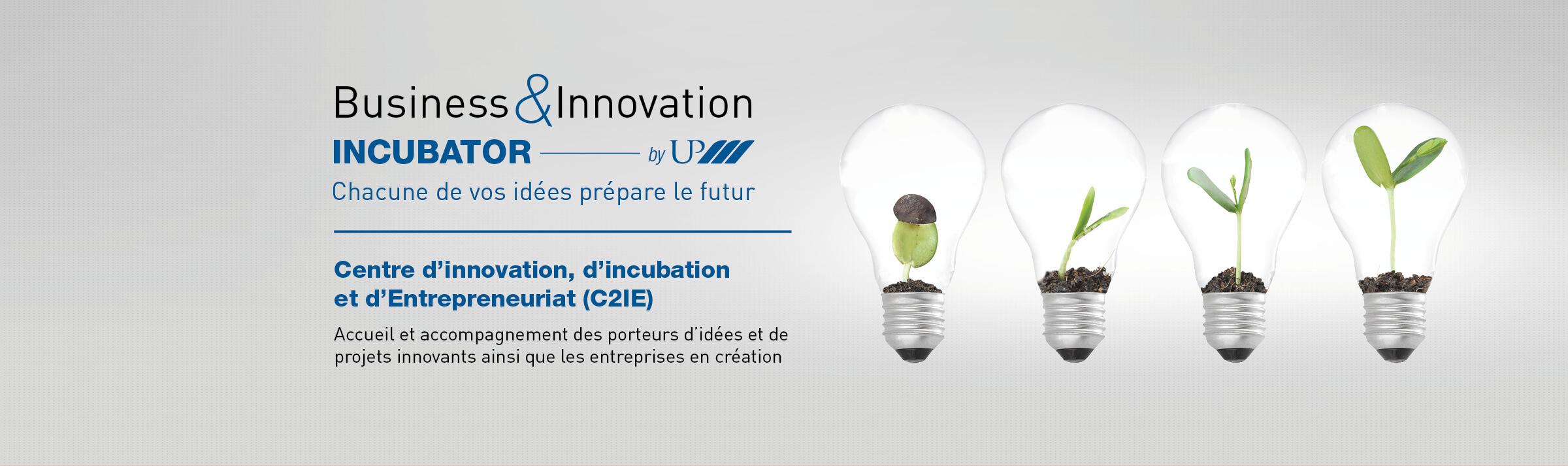 Couv incubator - 2